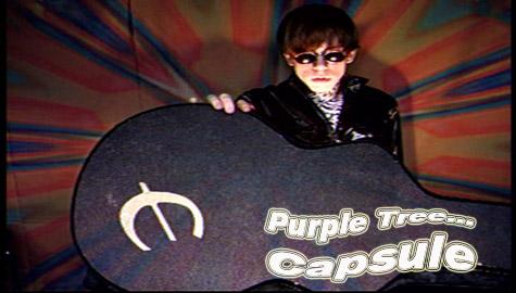 Purple Tree - Capsule Video Debut